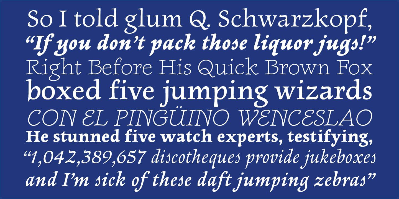 Newt Serif